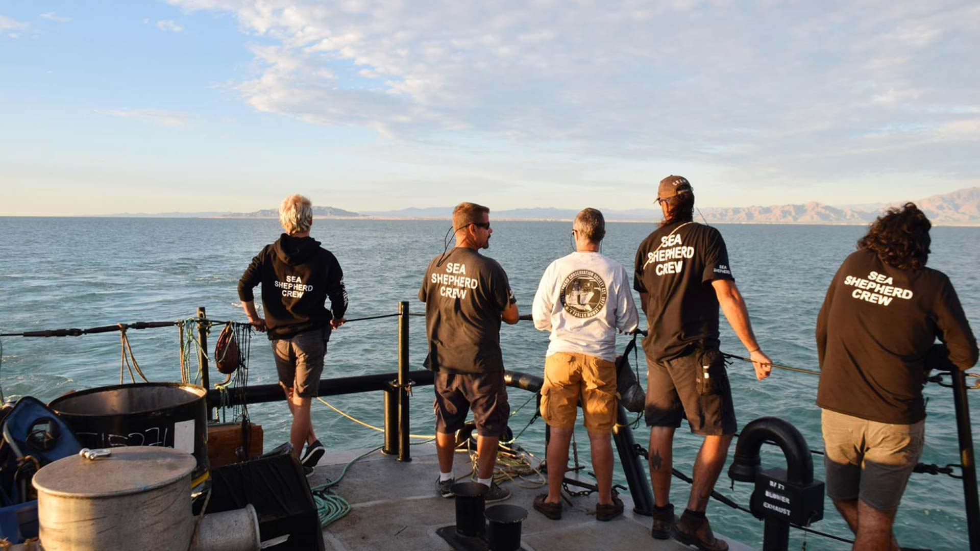 "Crew members from Sea Shepherd Conservation Society's ship in the Sea of Cortez are featured in the documentary ""Sea of Shadows."""