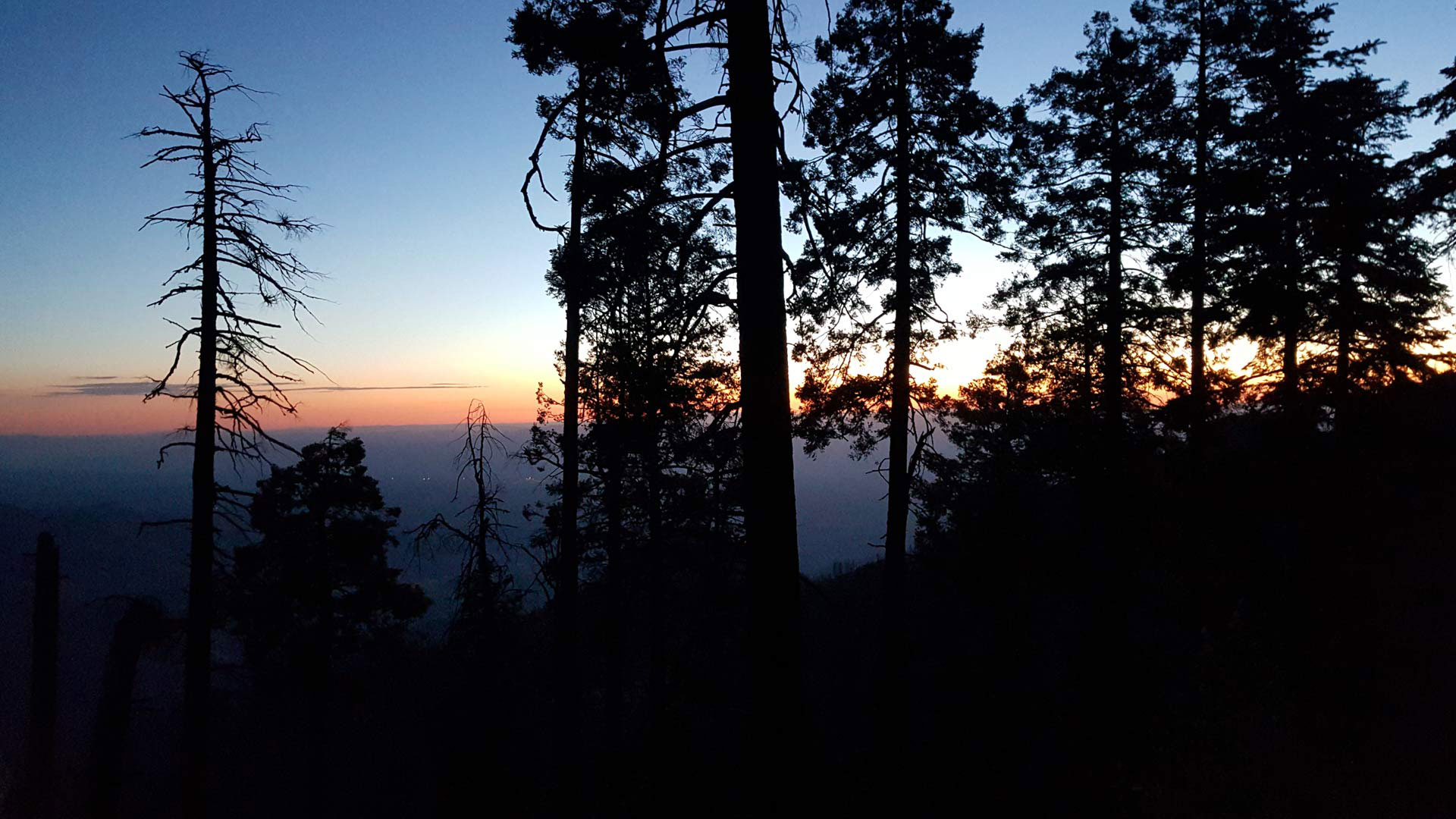 Sunrise on Mount Lemmon.