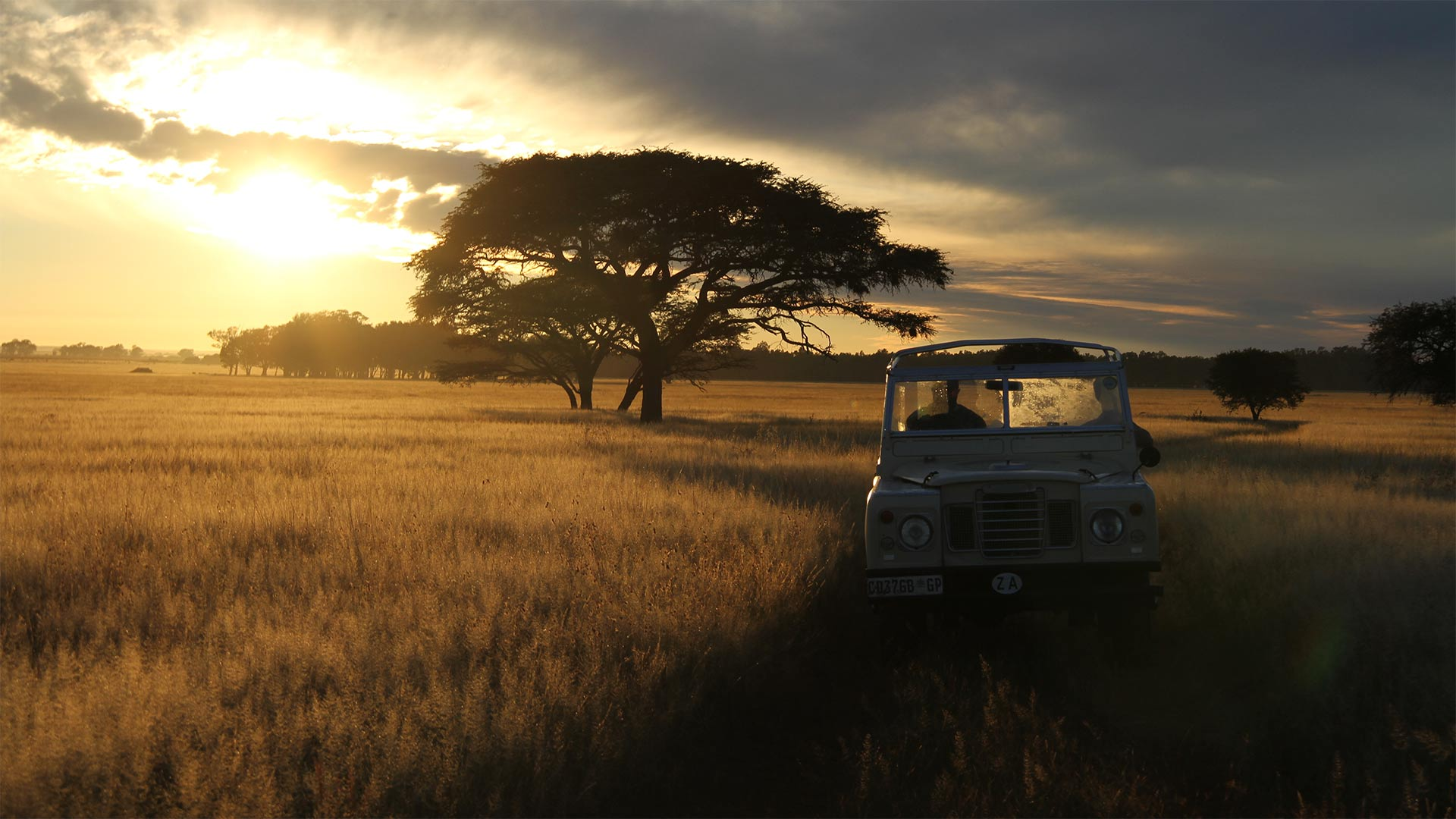 Biologist Tony Sinclair (Greg Kriek) gets taken out for morning drive through the Serengeti. Lindbergh Lodge, Wolmaransstad, North-West Province, South Africa.