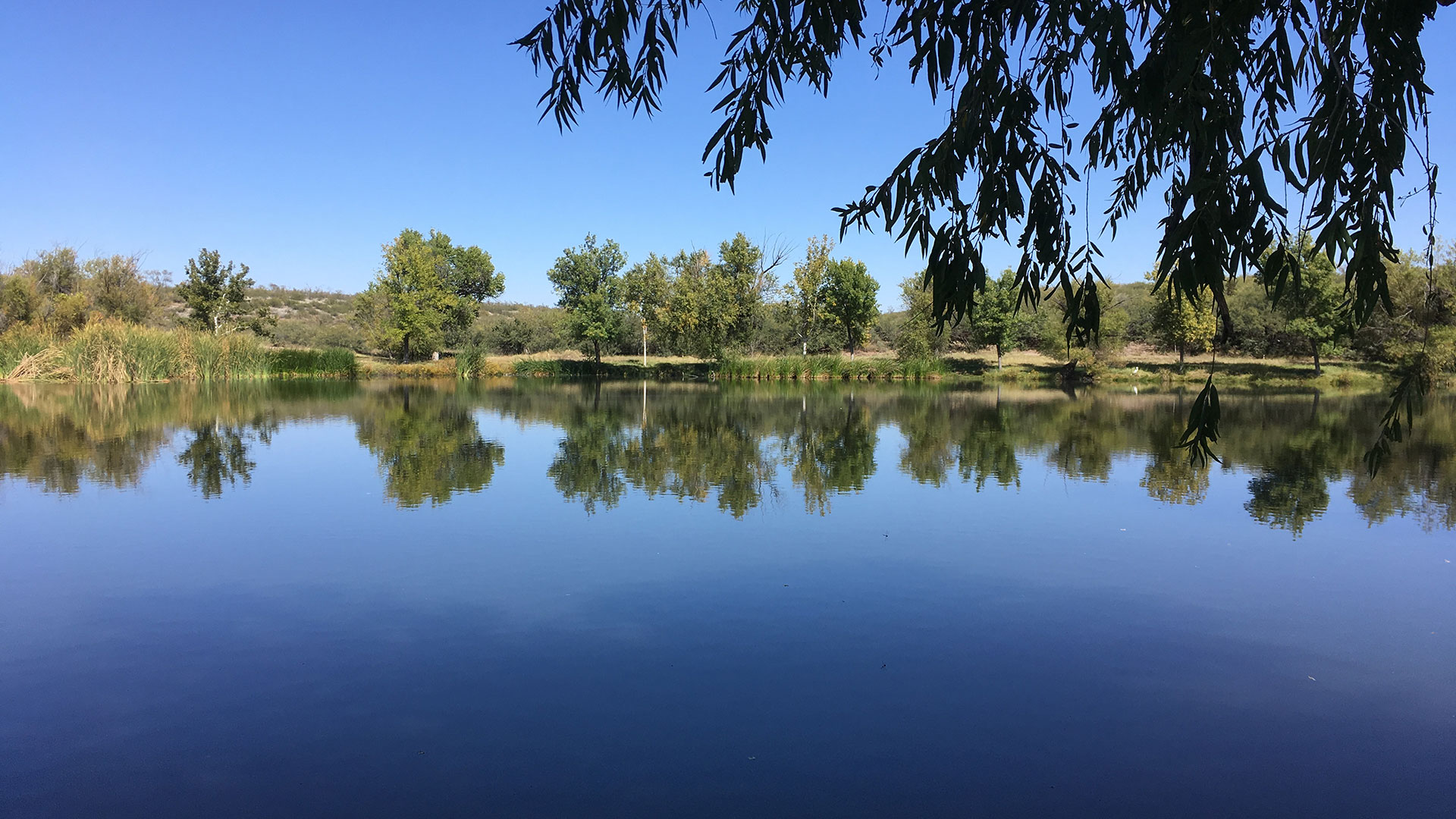 Slaughter Ranch Pond