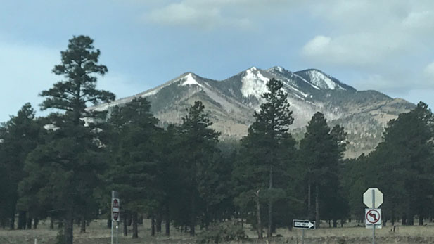 View of the San Francisco Peaks from the east.
