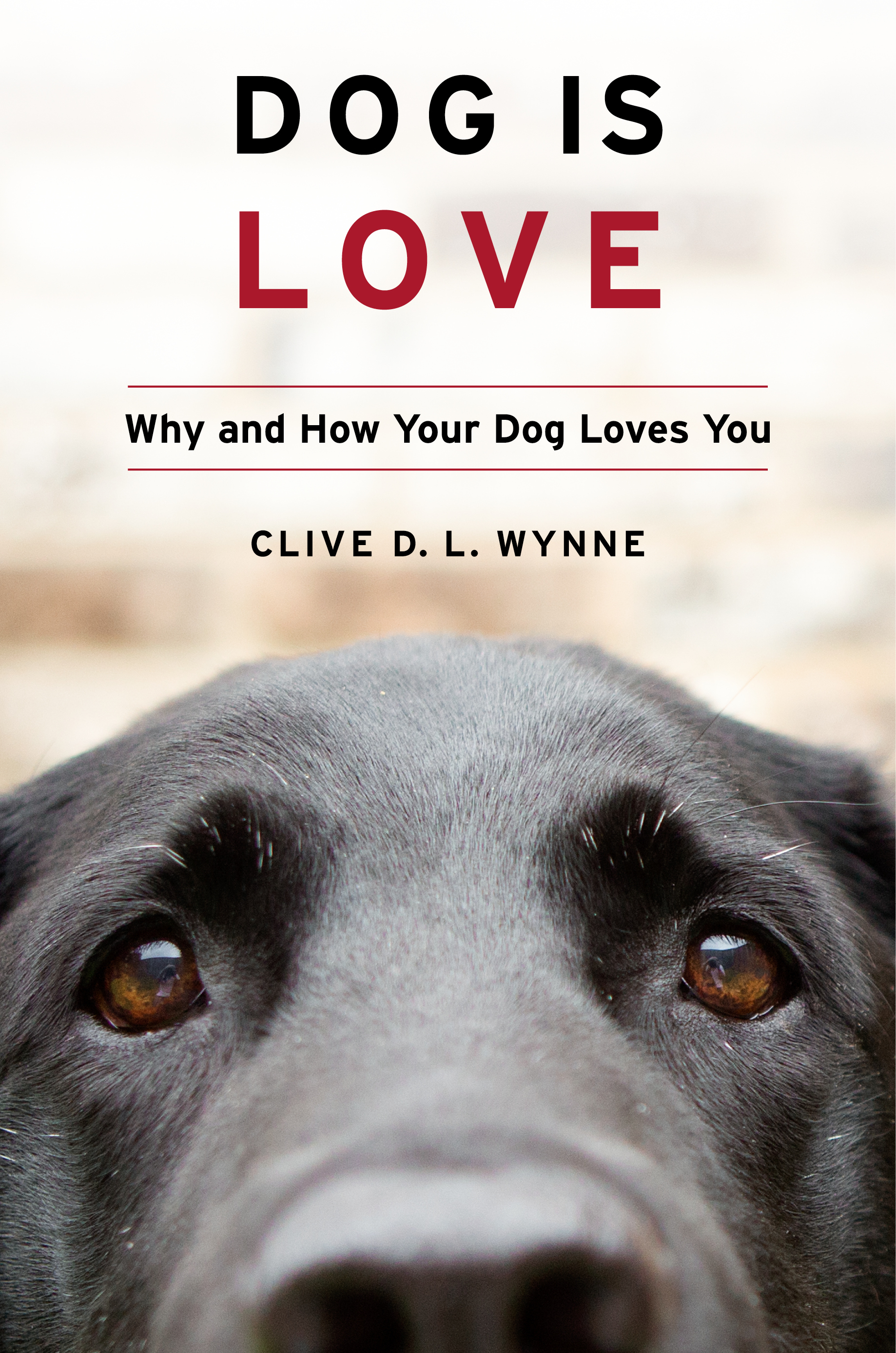 dog is love book cover unsized image