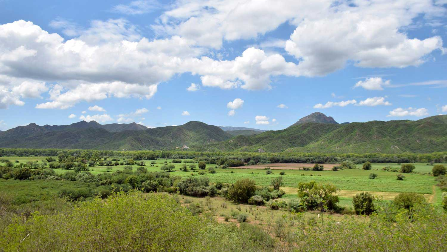 A view of the Rio Sonora valley from a hillside in Baviácora, Sonora, on July 30, 2019.