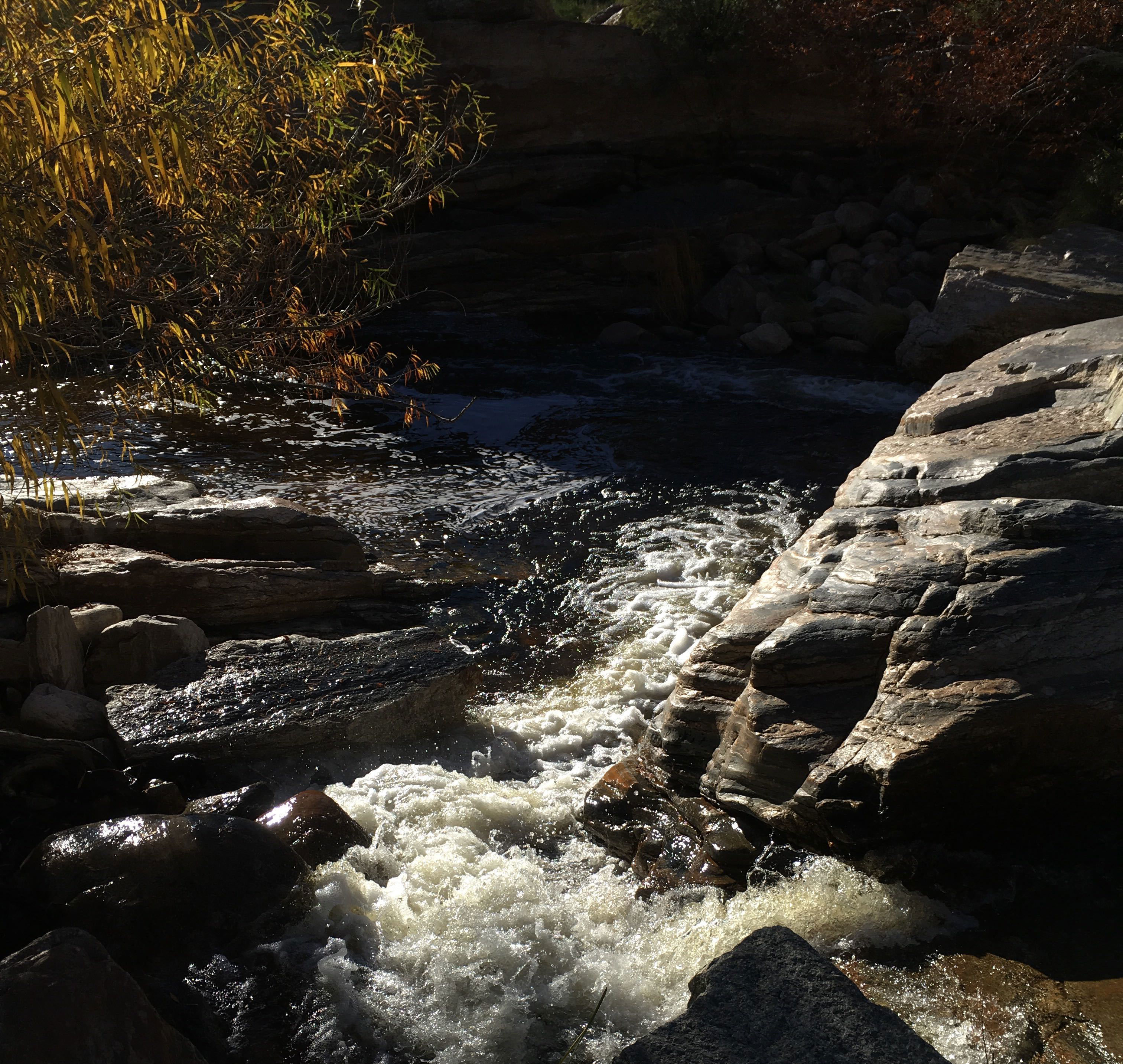 Sabino Creek 3