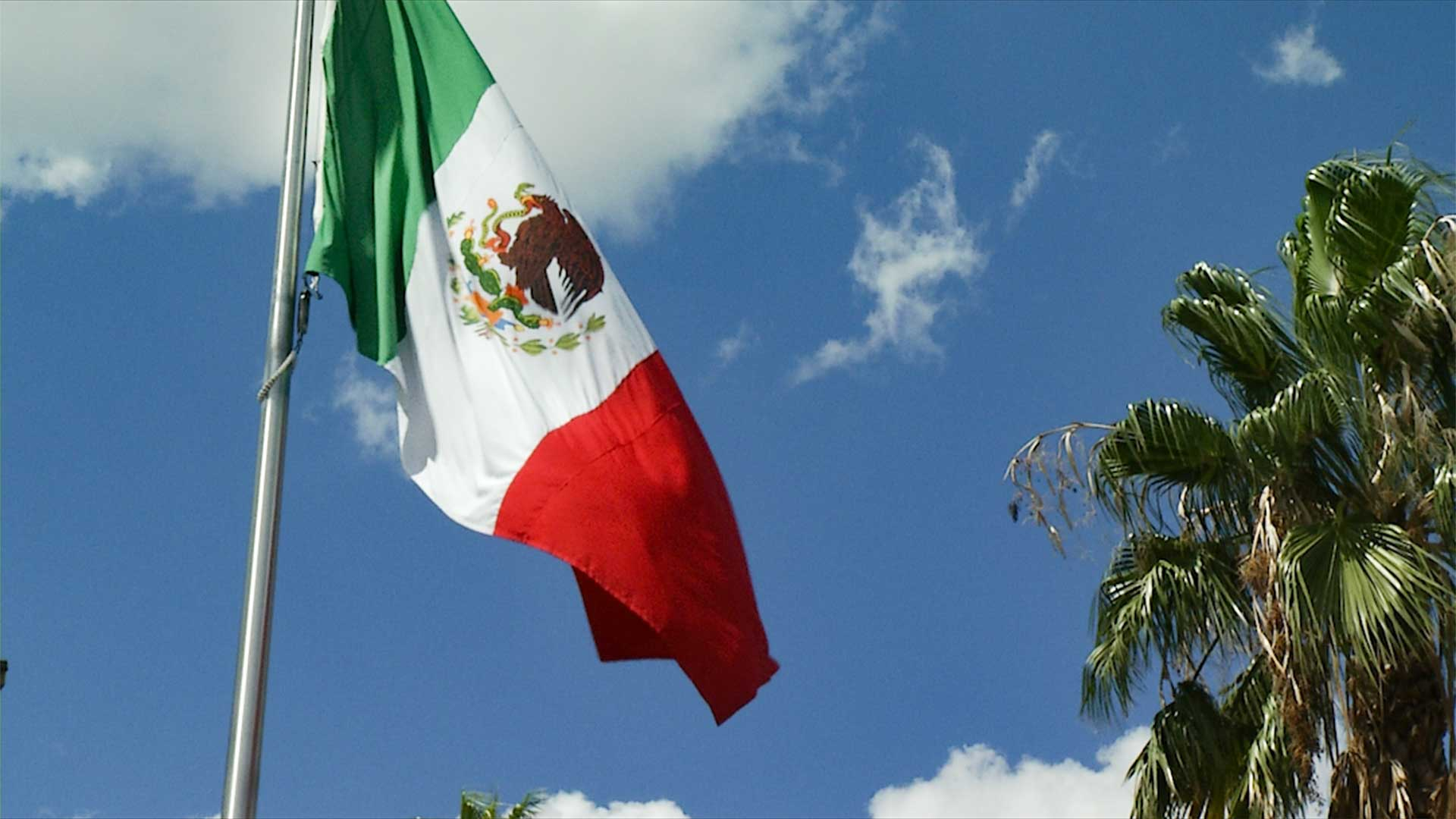 mexican flag outside consulate