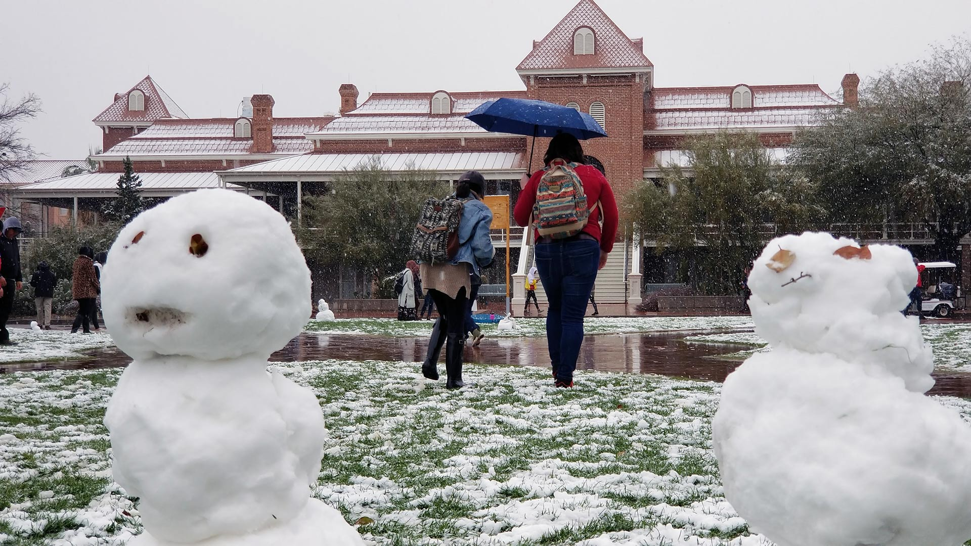 Students and staff enjoy the snowfall on the University of Arizona mall. From February 22, 2019.