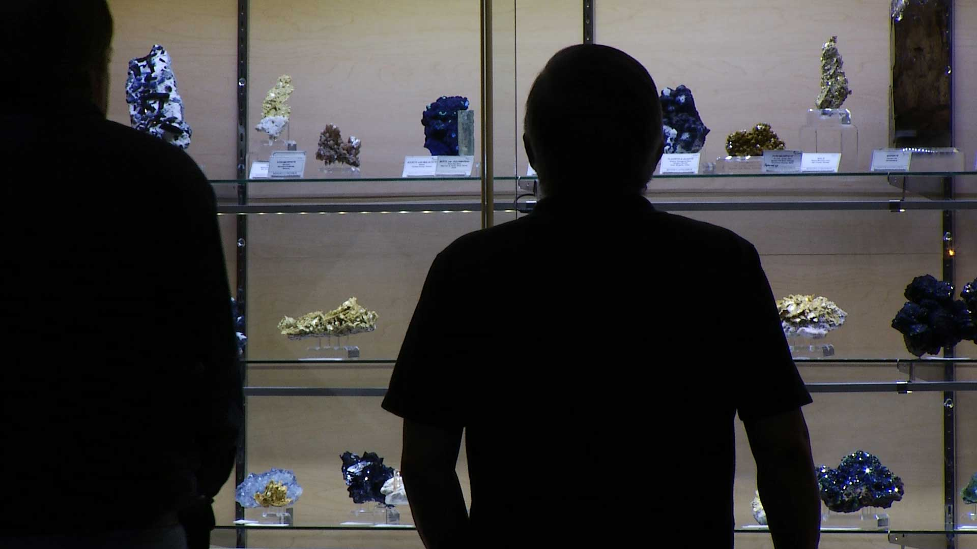 Visitors examine displays at the Tucson Gem and Mineral Show, 2015.