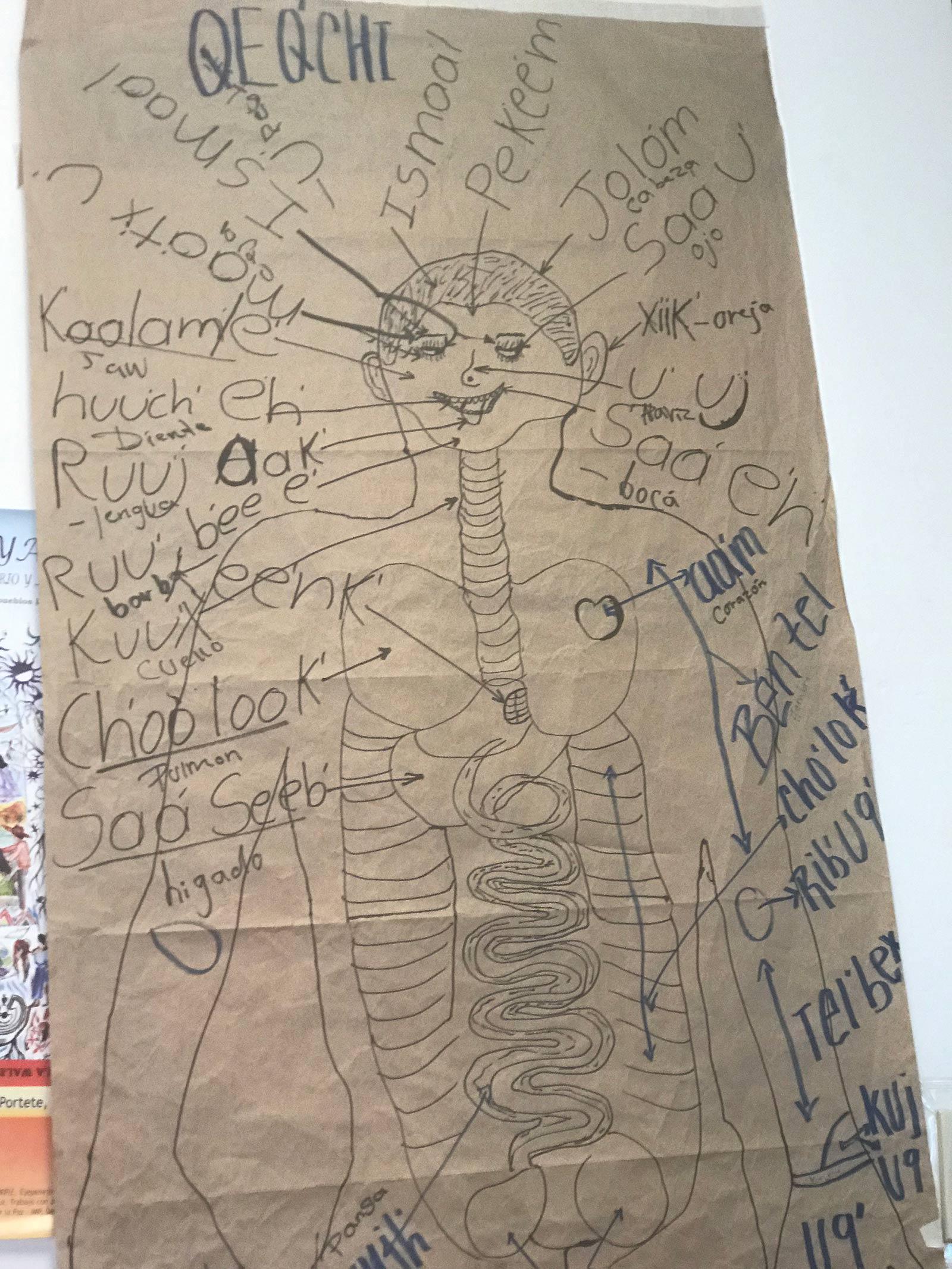 Body Drawing 1