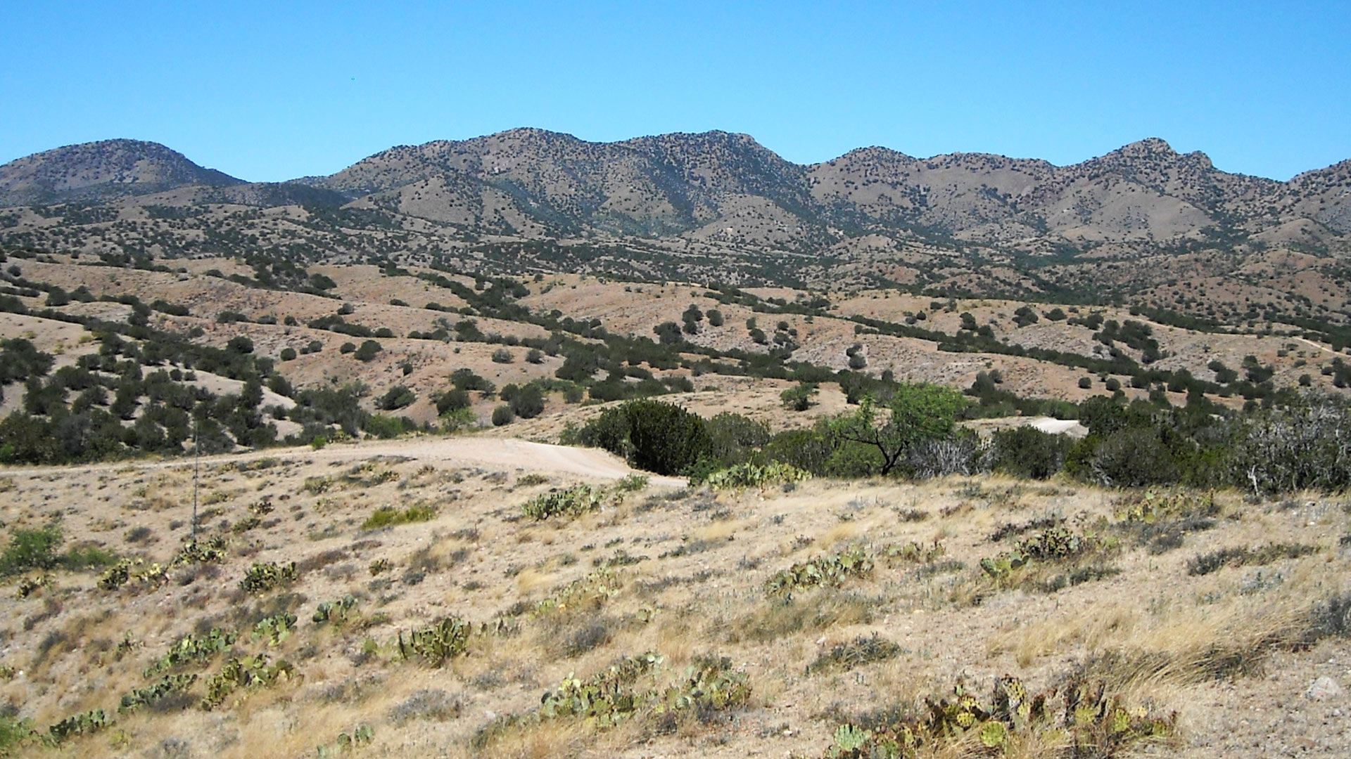 The Santa Rita Mountains in Southern Arizona is the proposed site of the future Rosemont Copper mining project.