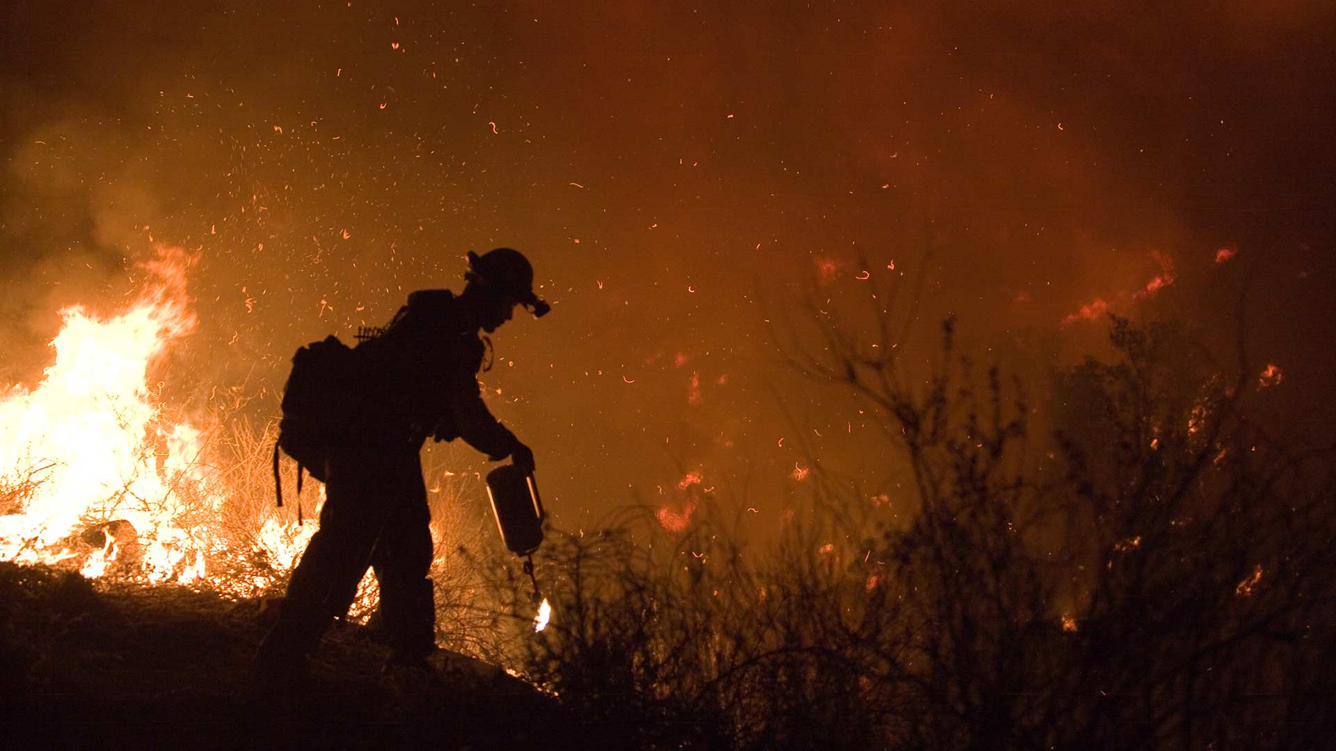 A firefighter sets a back burn to contain the Poomacha Fire in San Diego County, California, 2007.