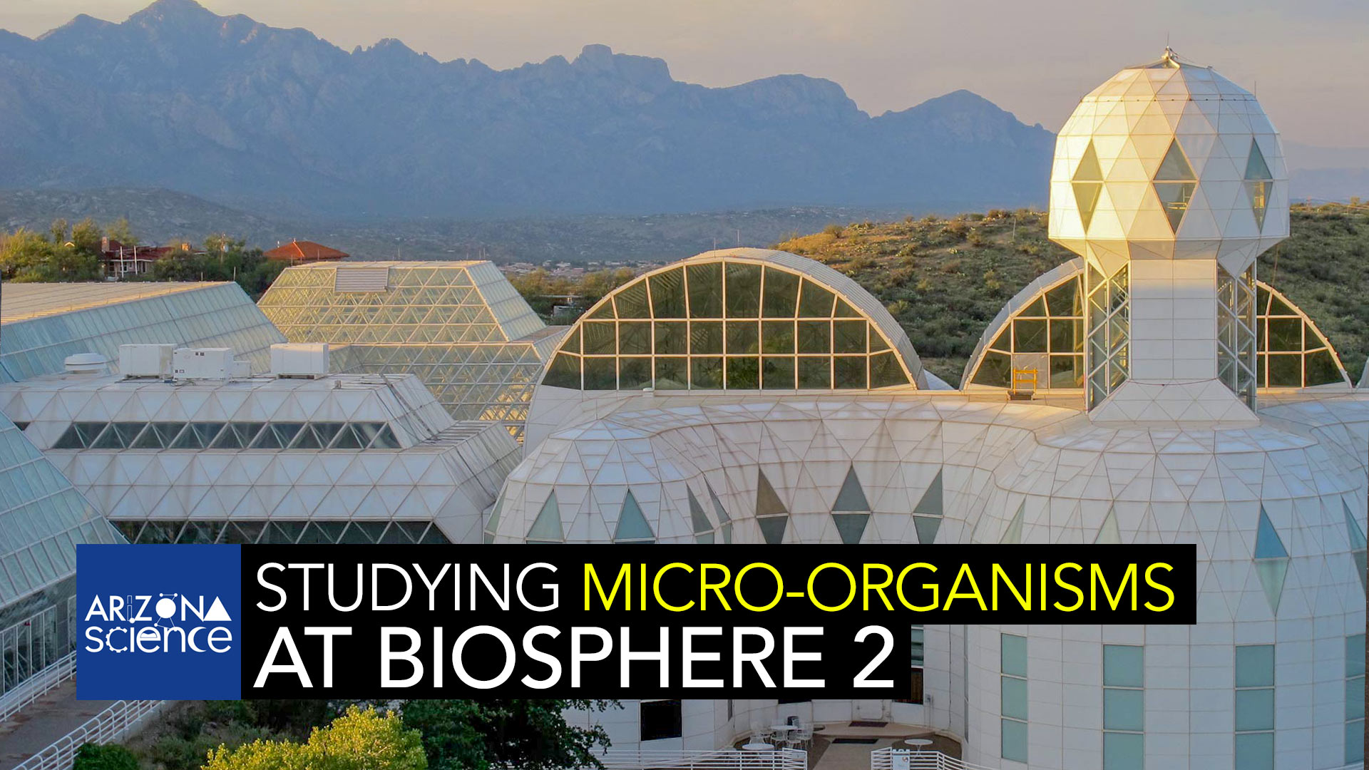 UA ecosystem professor Laura Meredith discusses her research at Biosphere 2.