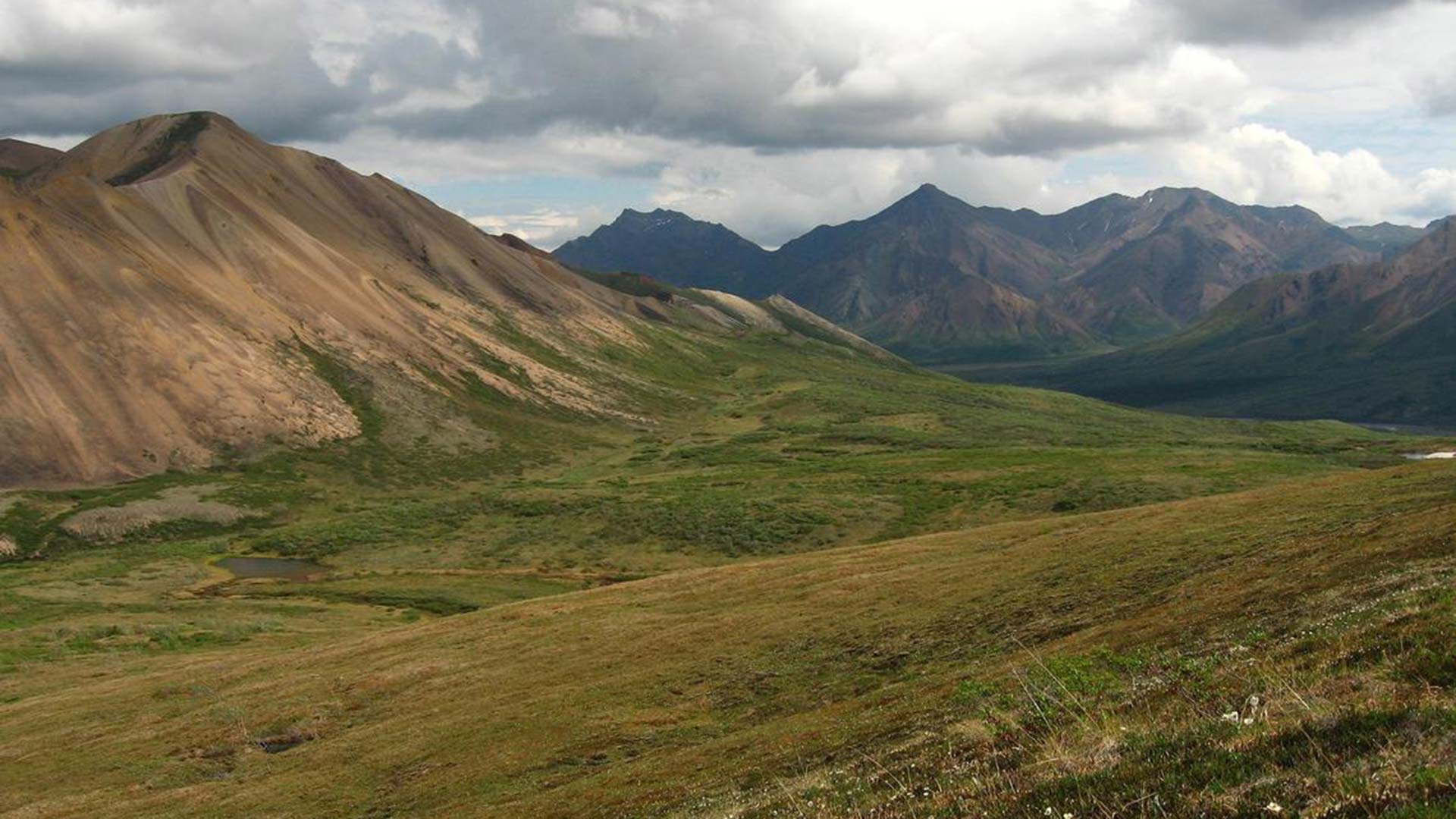 Alaskan tundra. A recent paper says preserving natural ecosystems, like tundra, is an important part of meeting climate goals.