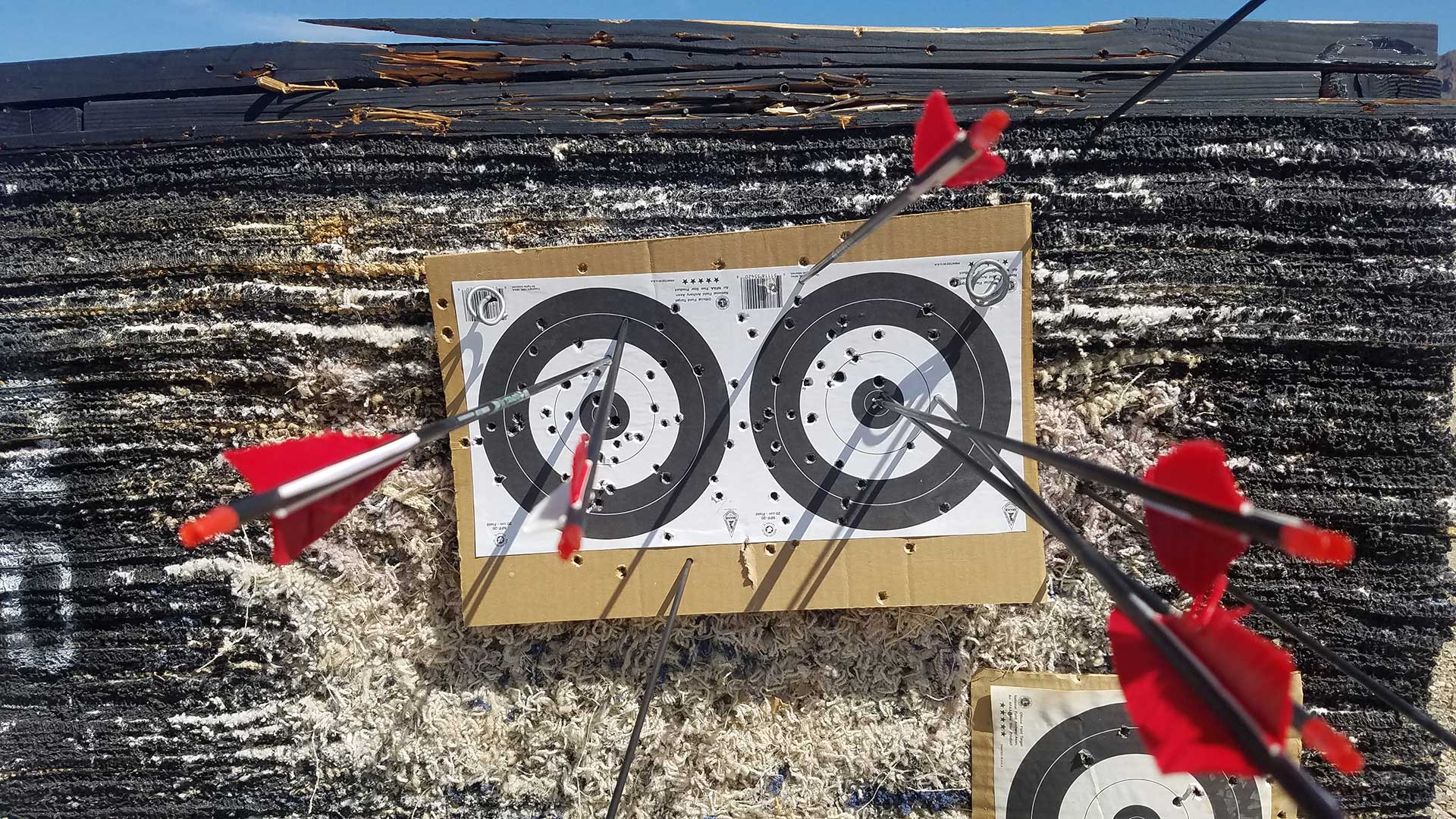 Arrows in an archery target at a range near Tucson.