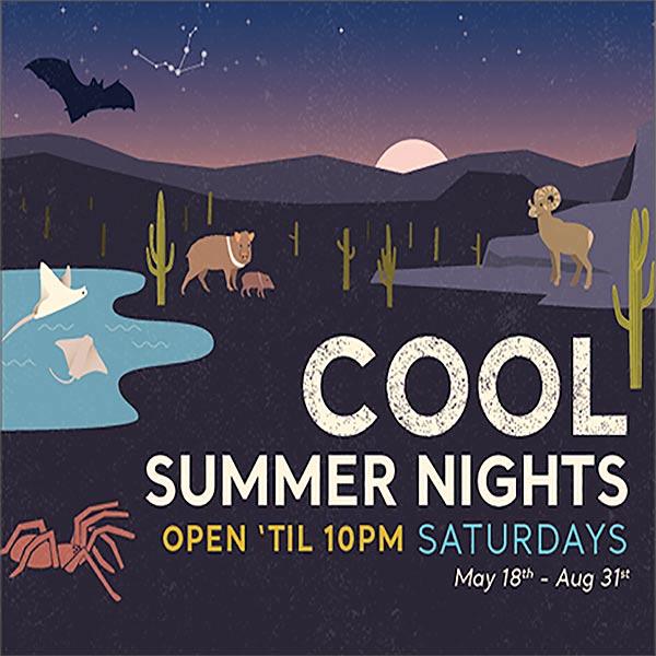 Desert Museum Cool Summer Nights
