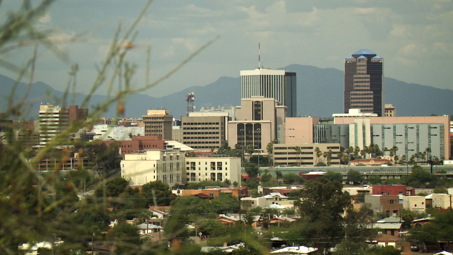 A view of downtown Tucson as seen from Tumamoc Hill.