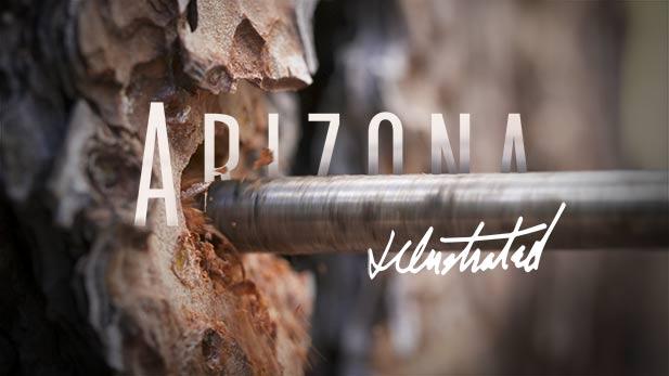 Arizona Illustrated Episode 537
