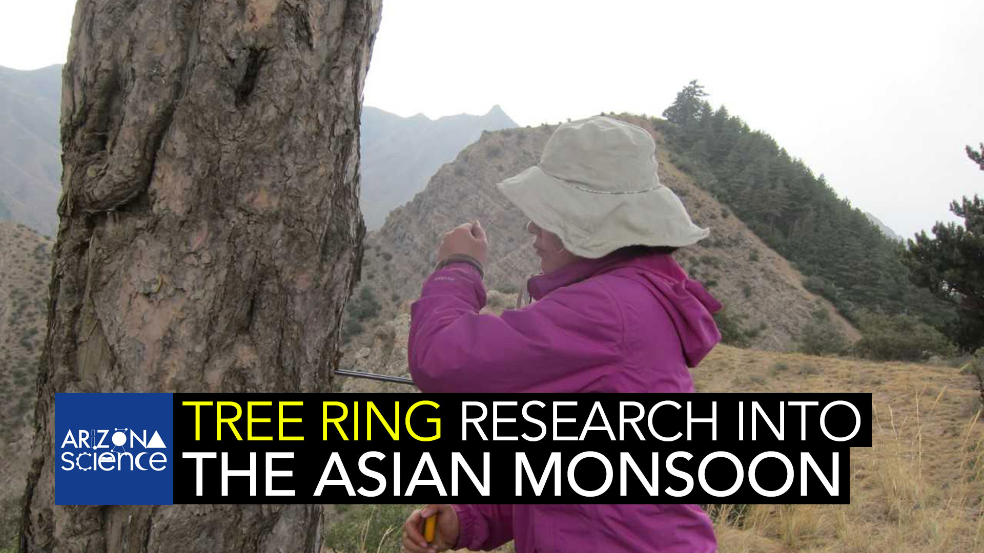 AZSCI 189 Tree Ring Asian Monsoon