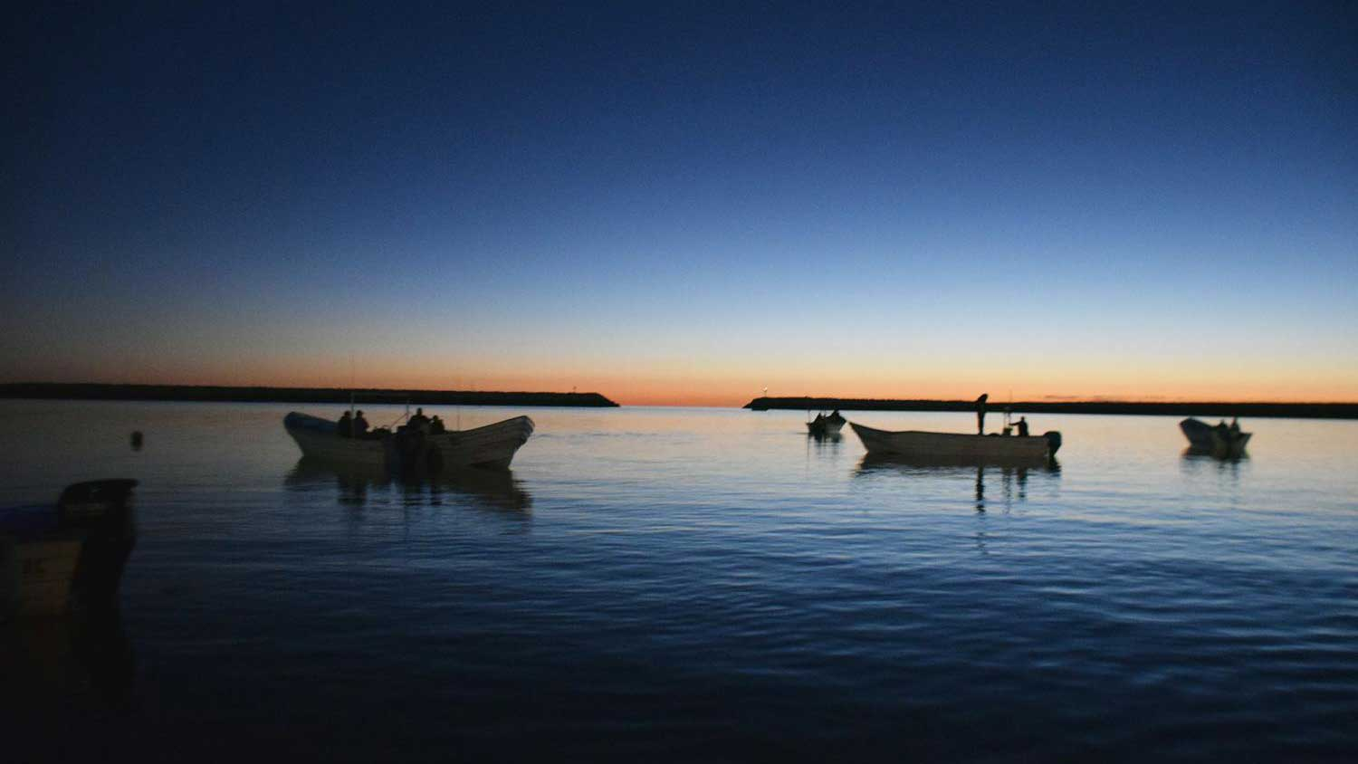 Fishing boats float on the Sea of Cortez outside the little town of San Felipe, Baja California, in November 2018.