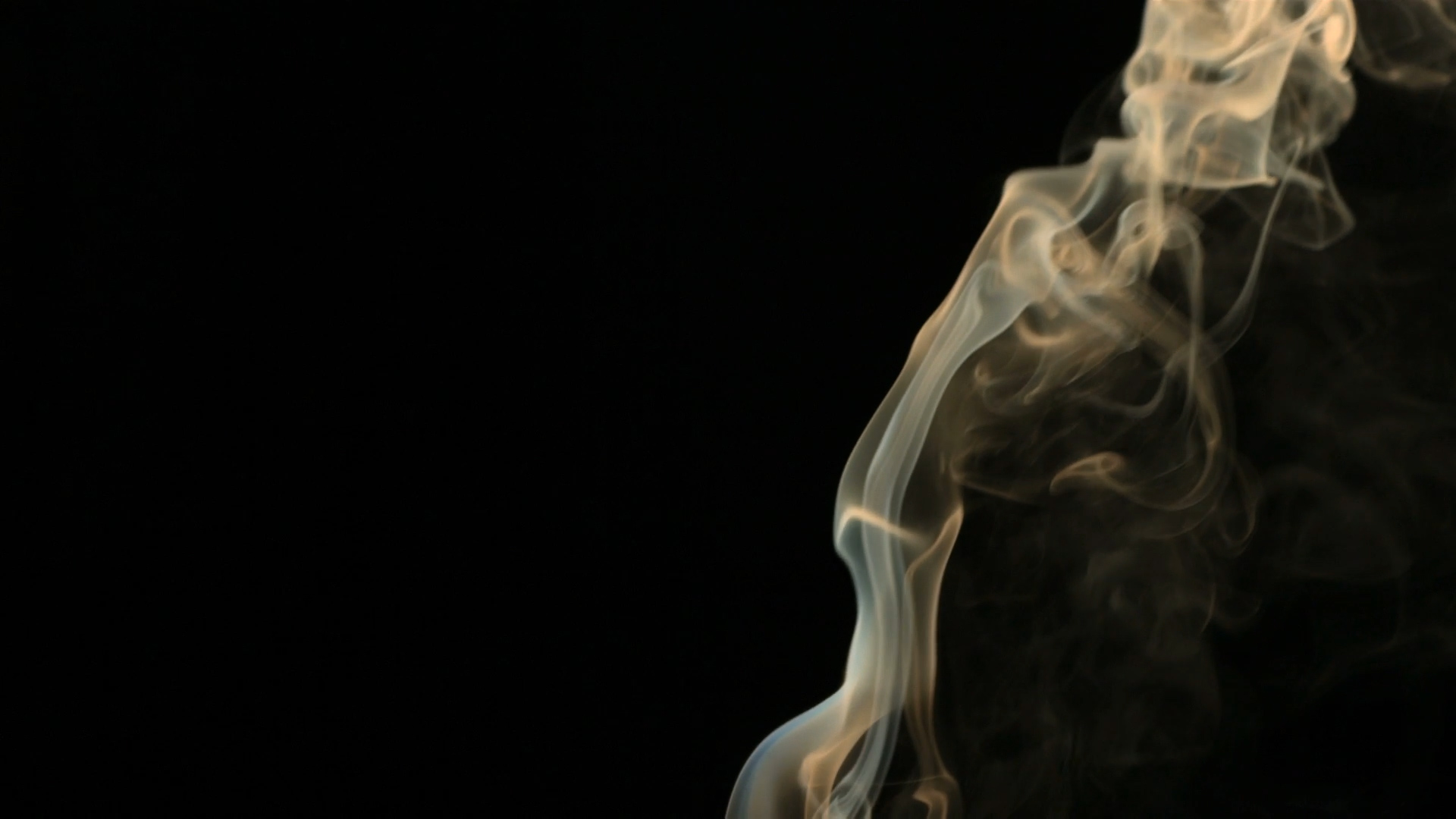 Smoke from a cigarette.