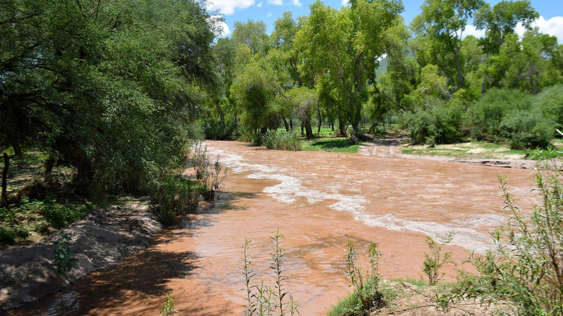 The Rio Sonora flows through the town of Baviácora, Sonora, July 30, 2019.