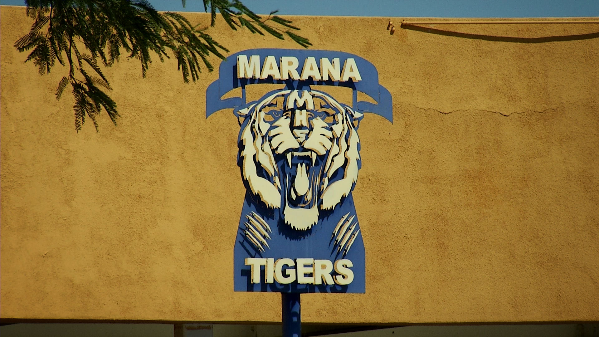 A logo of Marana High School's tiger mascot decorates a wall in a courtyard on campus.