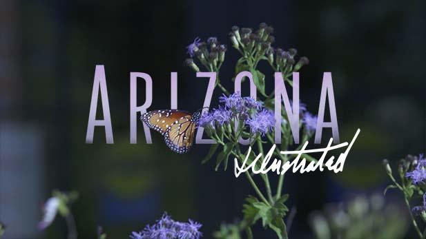 Arizona Illustrated Episode 615