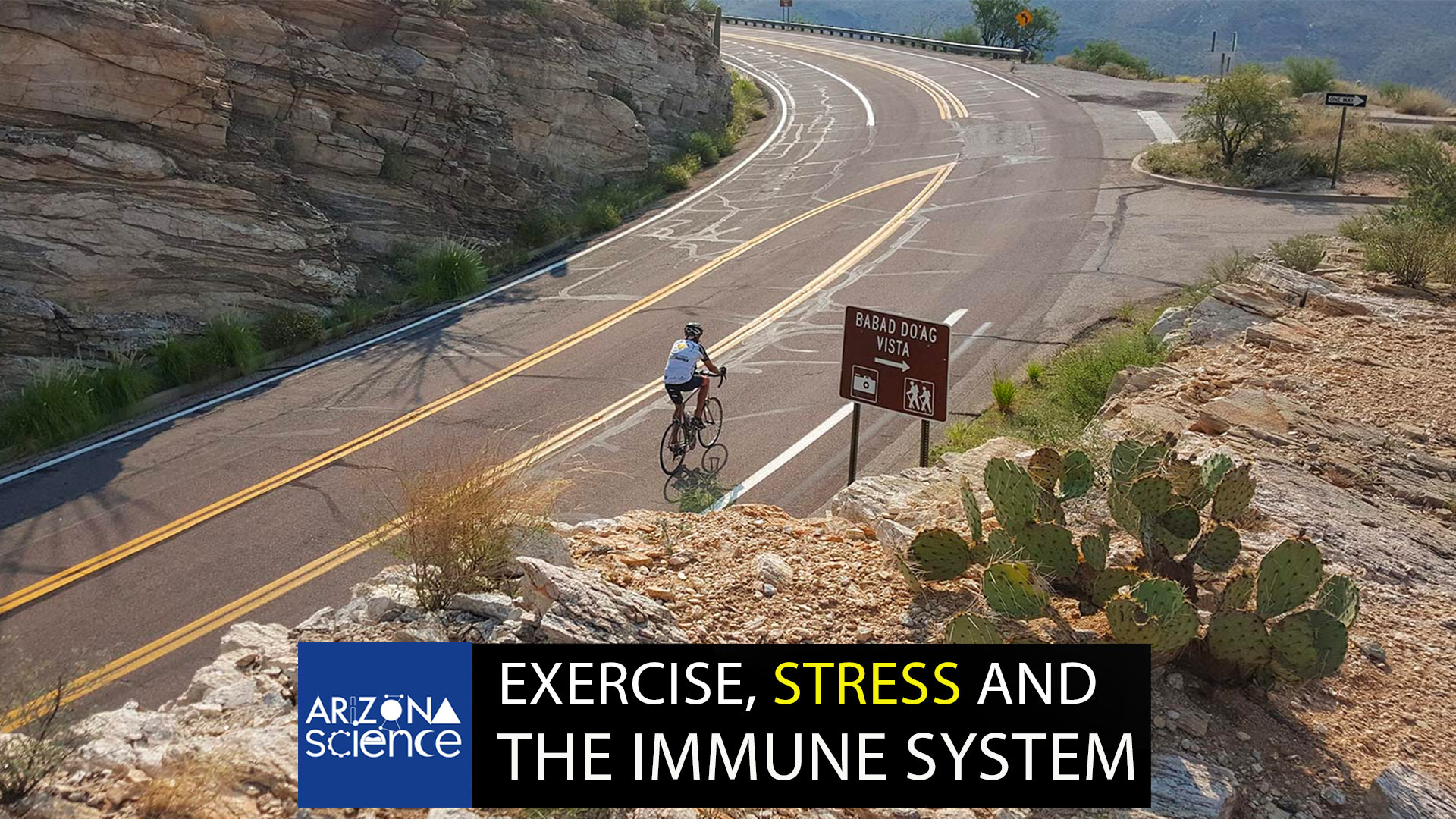Episode 216: Exercise, stress and the immune system