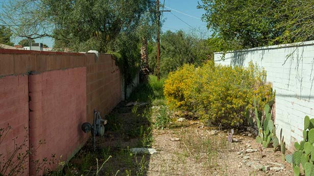 Tucson's Back Alleys