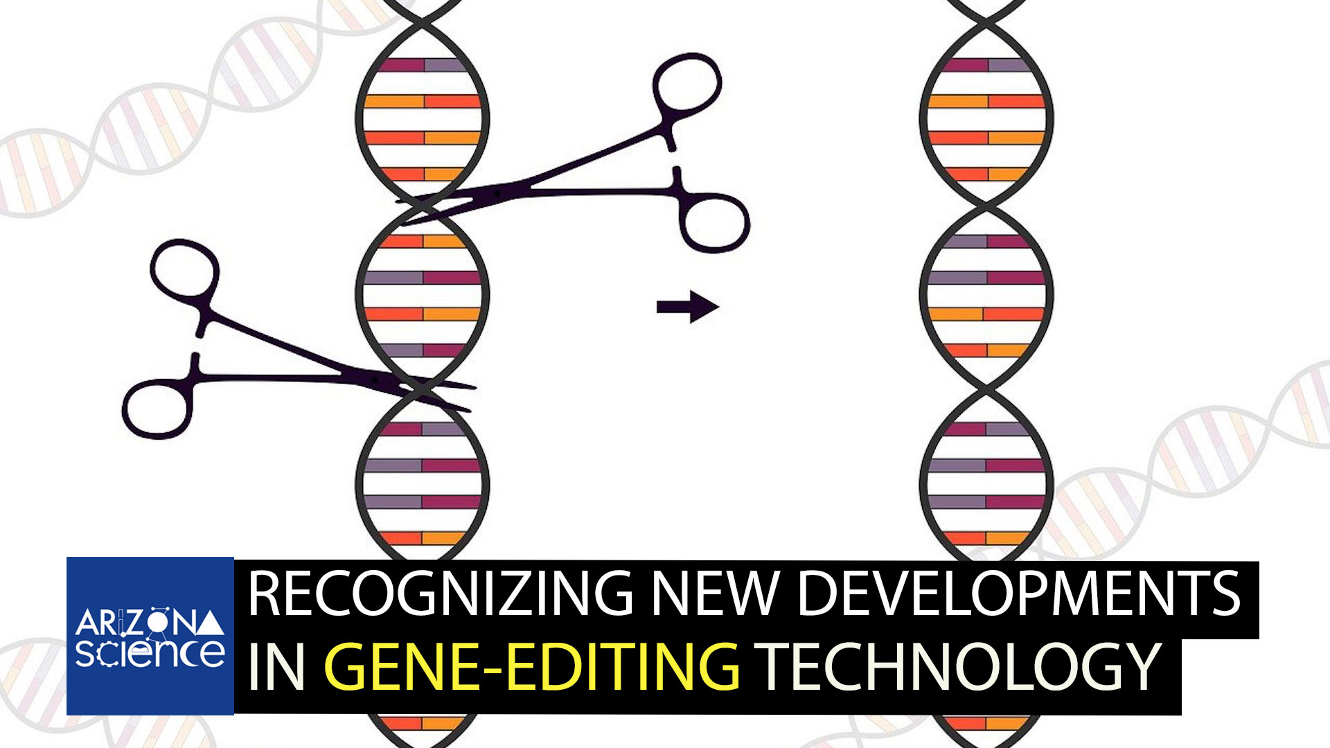 Scientists compare gene editing to cutting and splicing DNA.