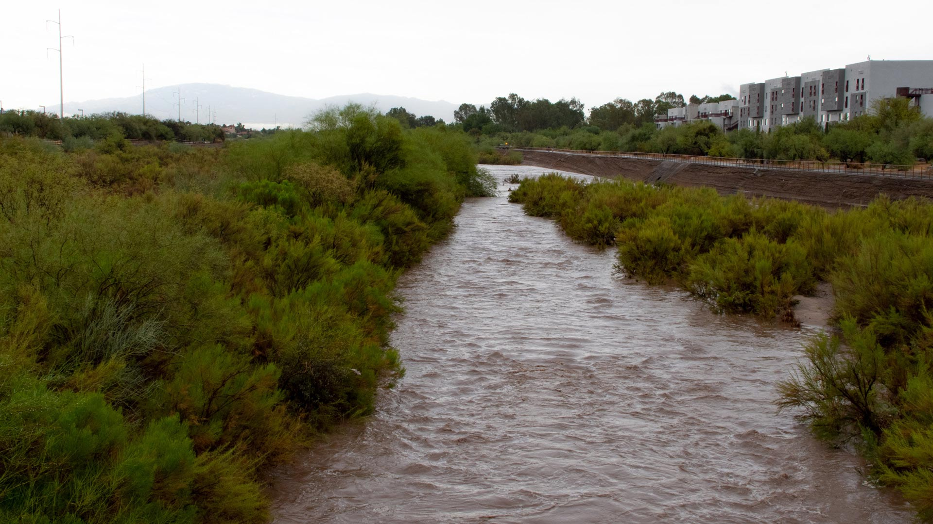 Rillito River flows after a monsoon storm, July 2020