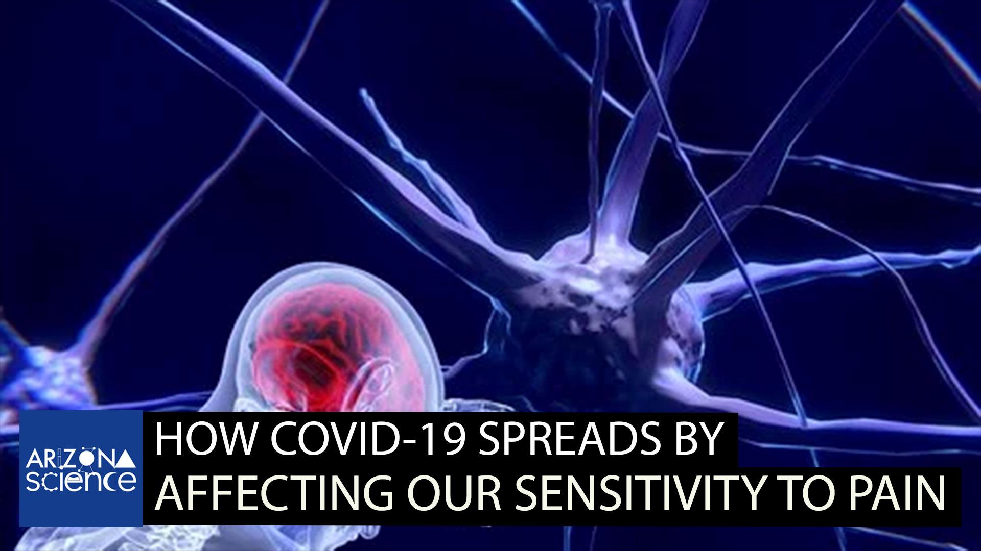 AZSCI 257 covid and pain sensitivity