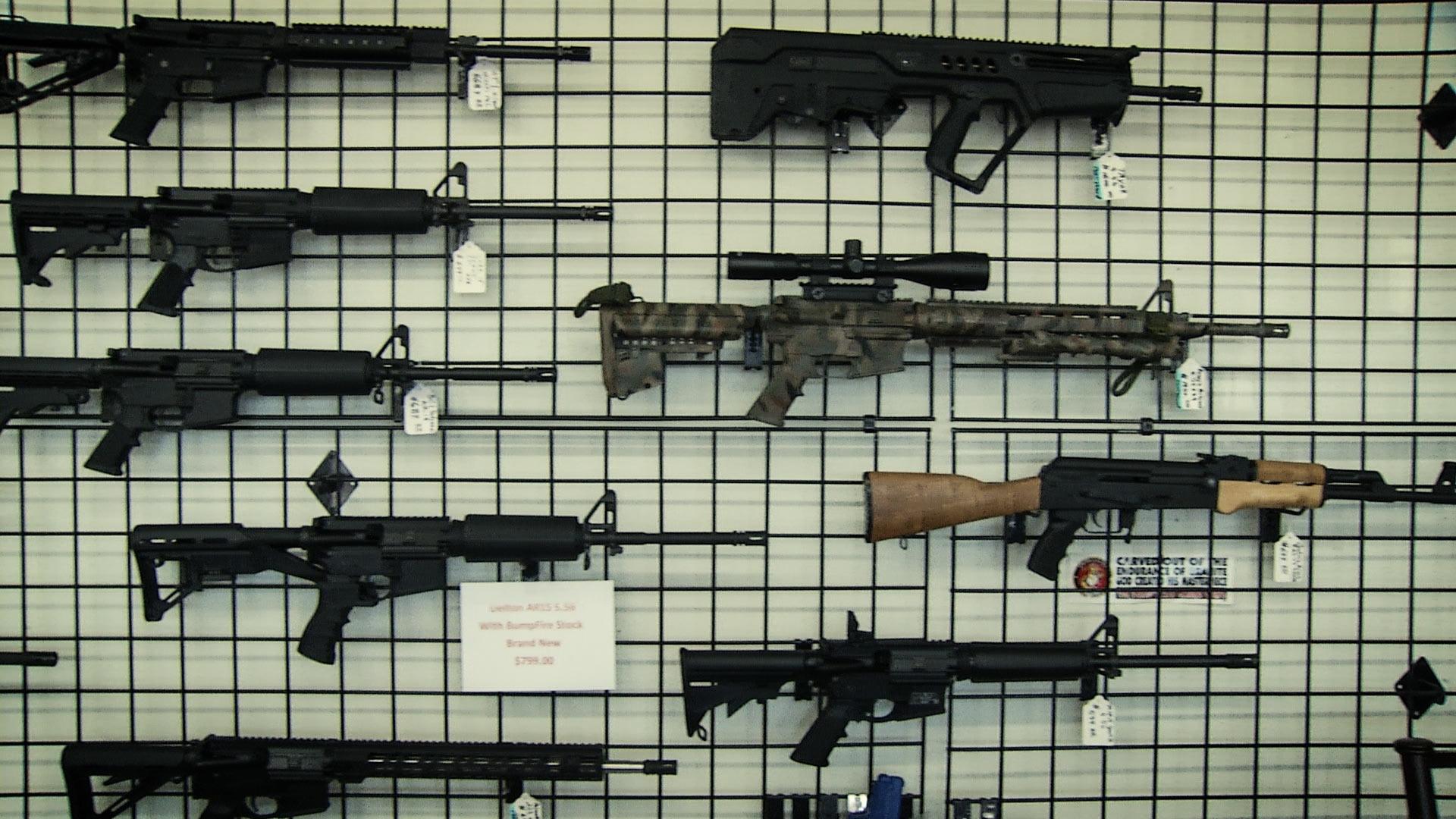 gun 2nd amendment resolution
