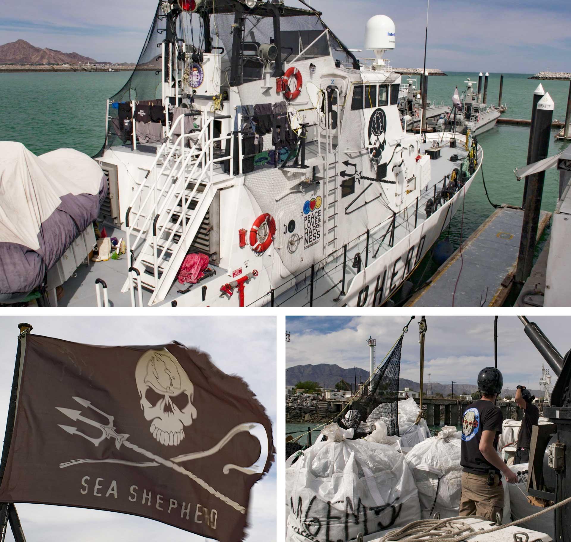 Sea Shepherd's Farley Mowat ship.