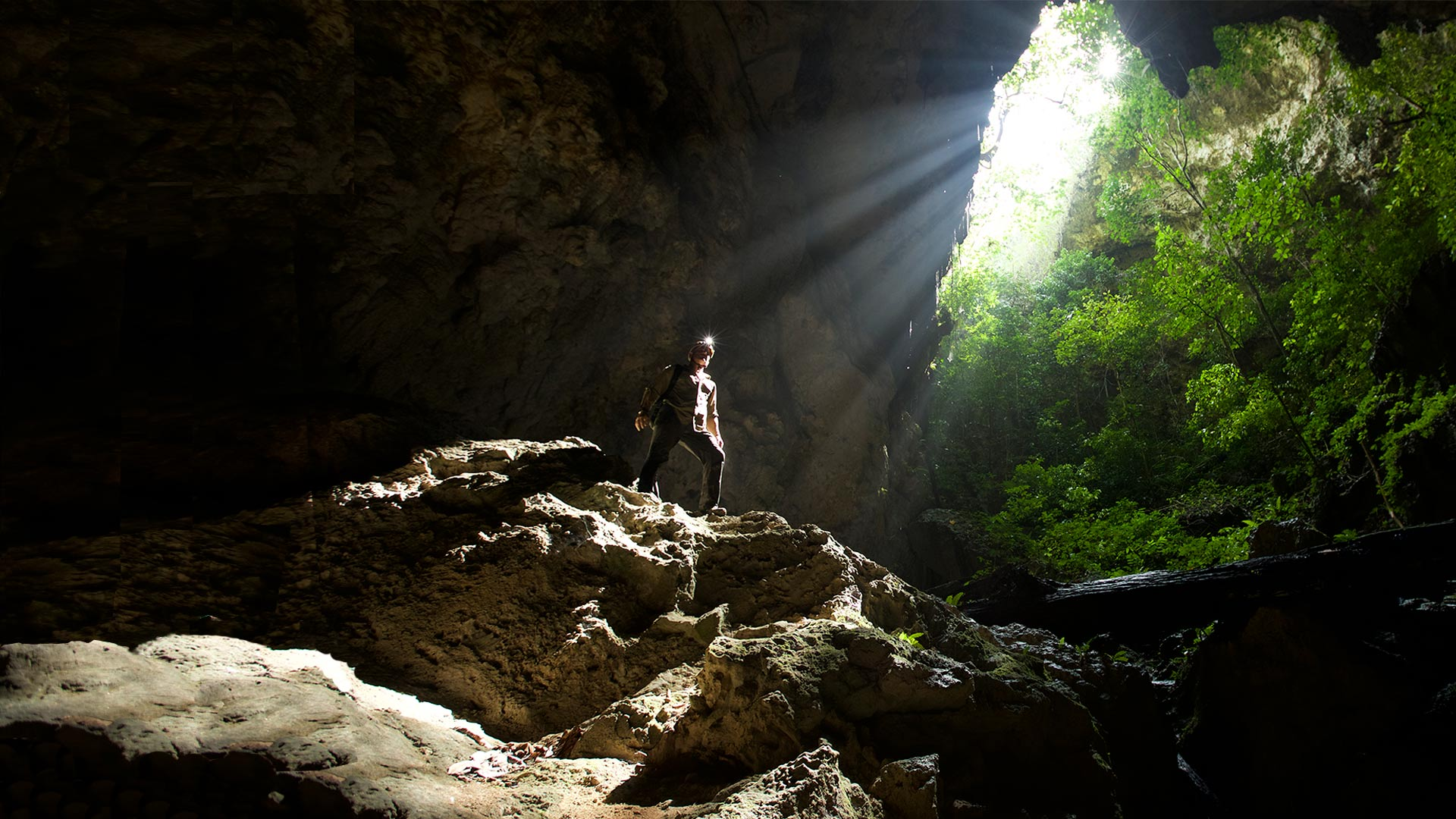 Steve stands under a colapsed doline inside Tebo Cave which is home to the resurgence of the Marang River after it has completed its journey from the East, all the way under the Gergaji Karst Block.