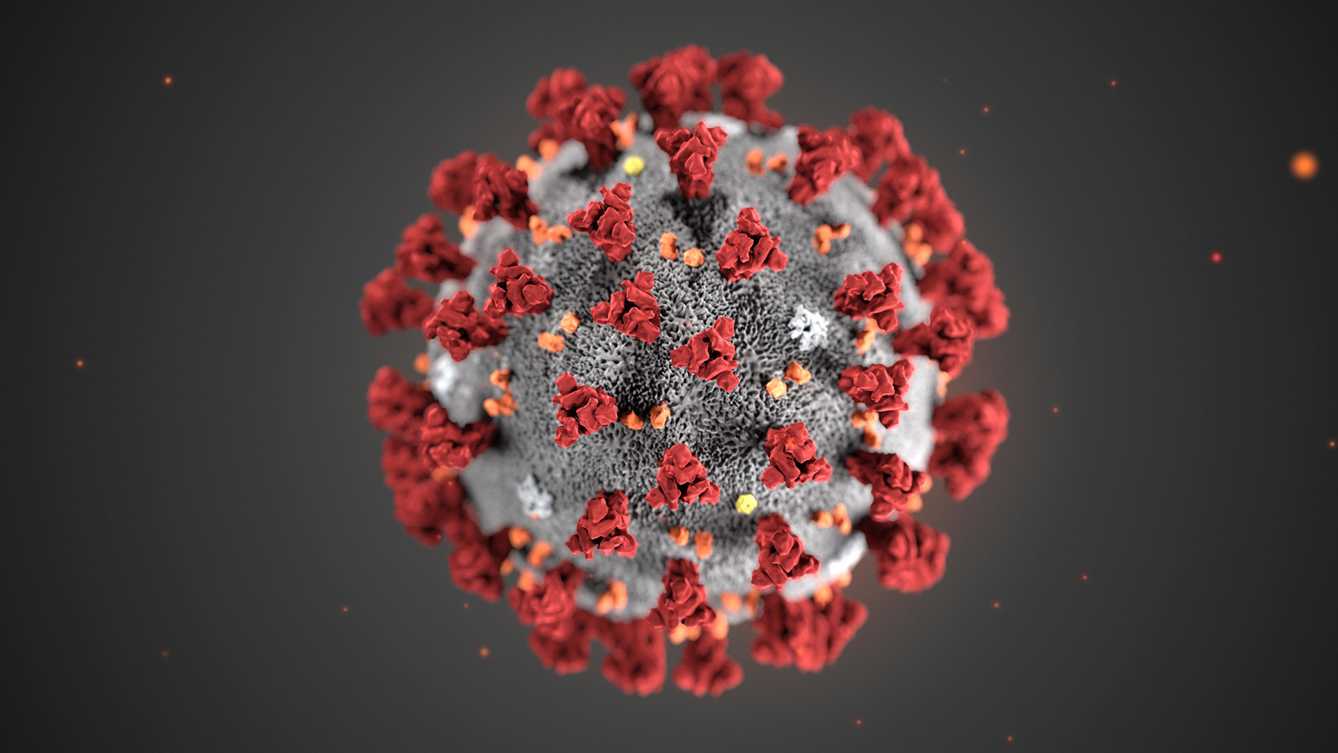 This illustration provided by the Centers for Disease Control and Prevention (CDC) in January 2020 shows the 2019 Novel Coronavirus (2019-nCoV).