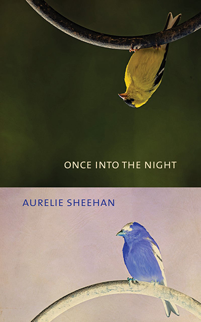 once into the night book cover unsized image