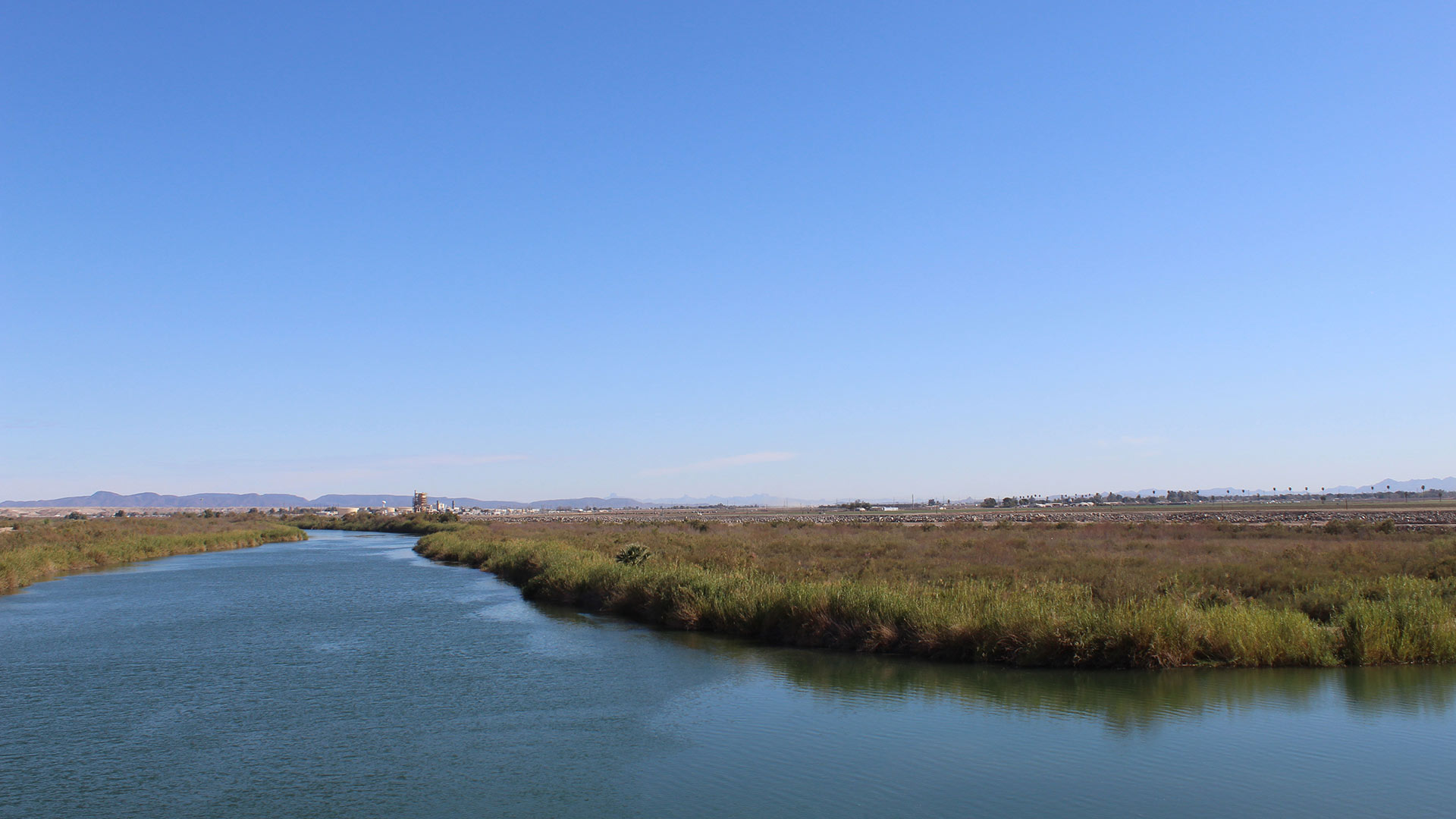 The Colorado River, west of Yuma, Arizona, before it reaches Morelos Dam on the U.S.-Mexico border.