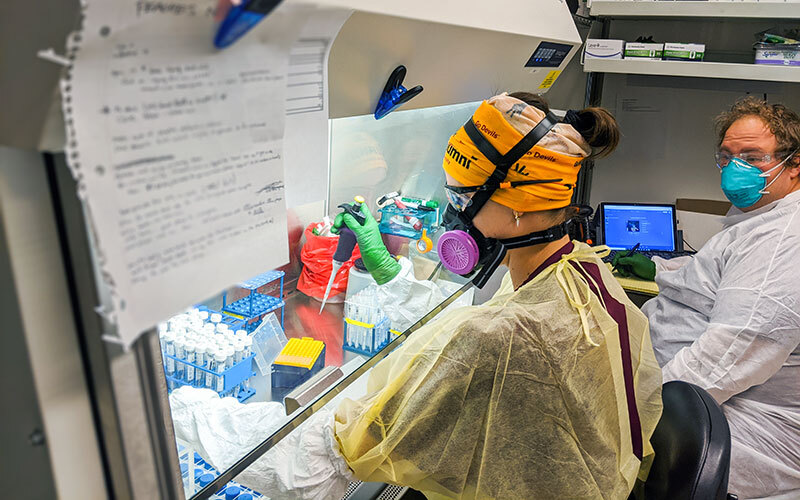 ASU biodesign saliva