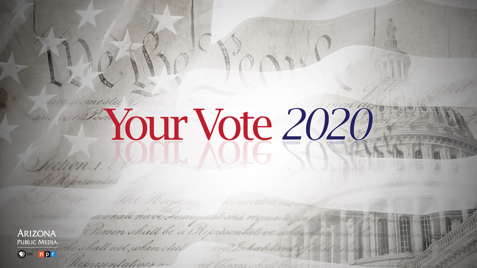Your Vote 2020 OG