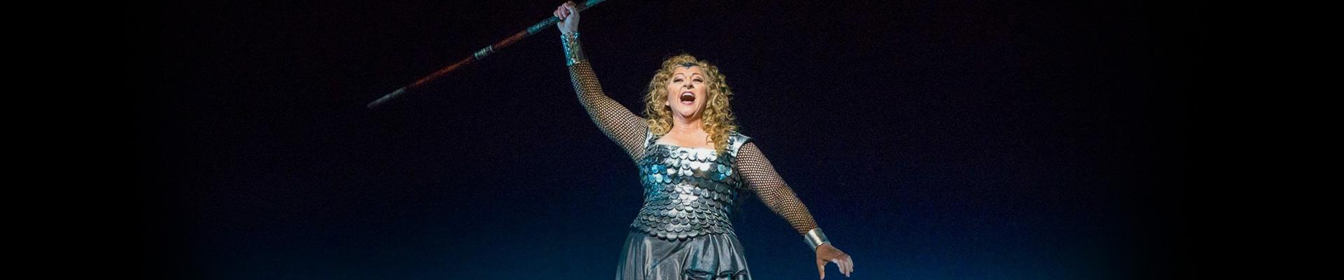 Nightly Opera Stream Die Walküre