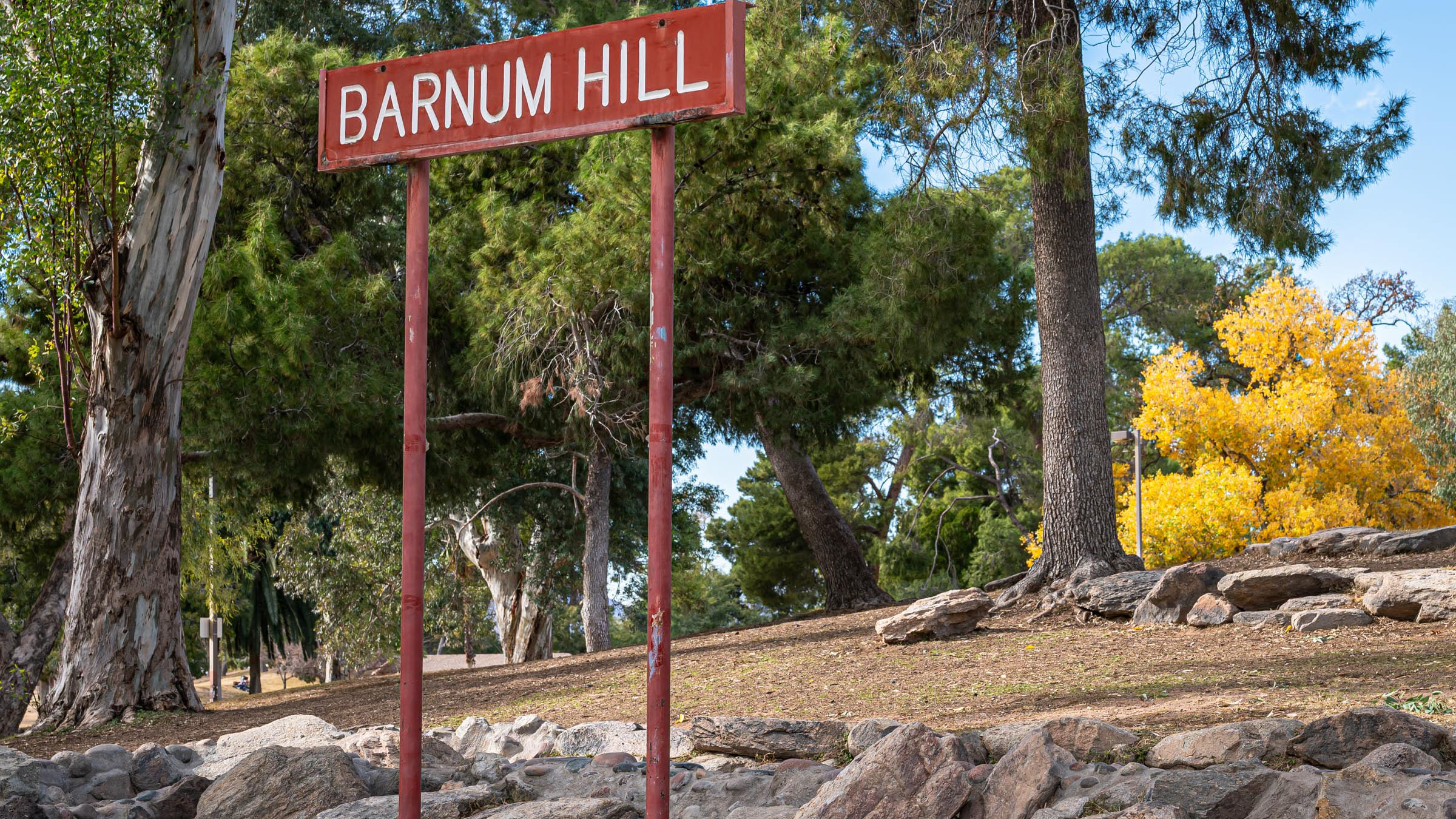 The sign designating Barnum Hill, a man-made feature of Reid Park that may soon become a part of Reid Park Zoo's planned tiger enclosure.
