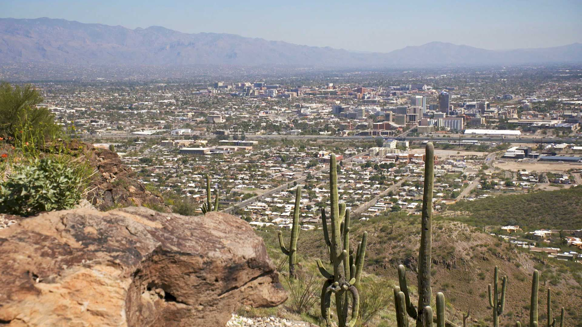 The city of Tucson observed from Tumamoc Hill.