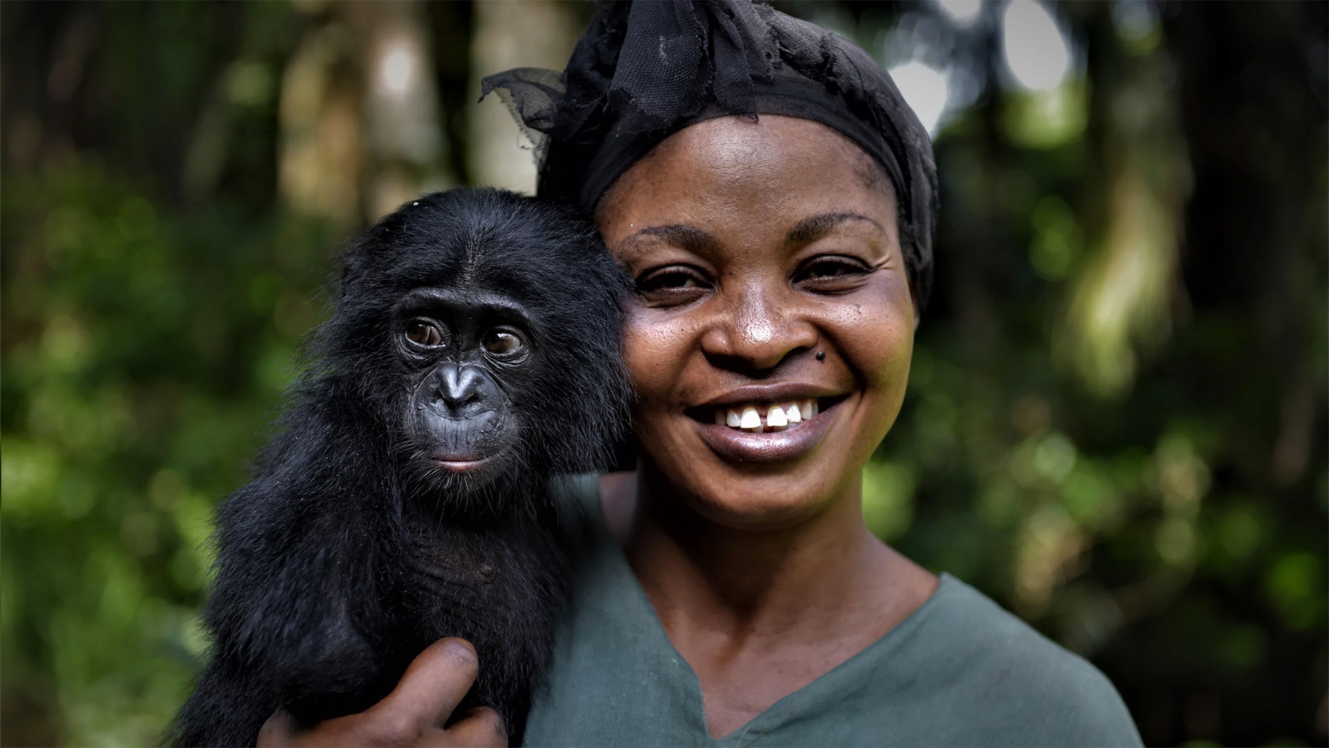 """Yvonne Vela Tona, one of the """"mamas"""" at the sanctuary, looks after the young bonobo Esake."""