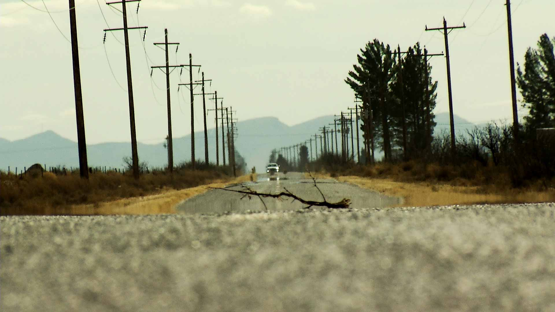 A branch is positioned in the middle of a rural road in southern Arizona.