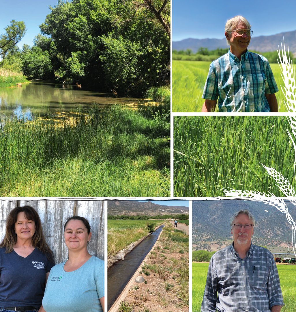 arizona agriculture water unsized