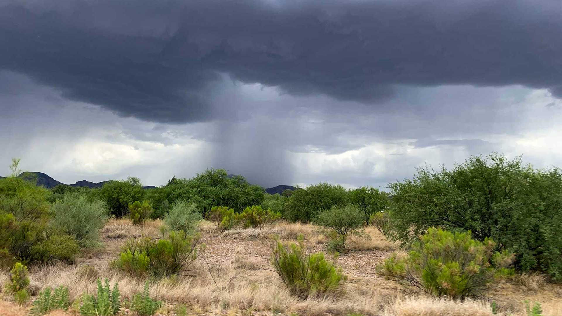Predicting monsoon rainfall is not an exact science, yet.