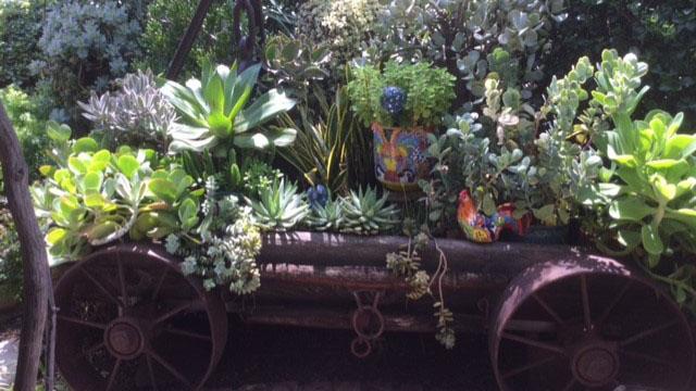 bisbee bloomers wagon