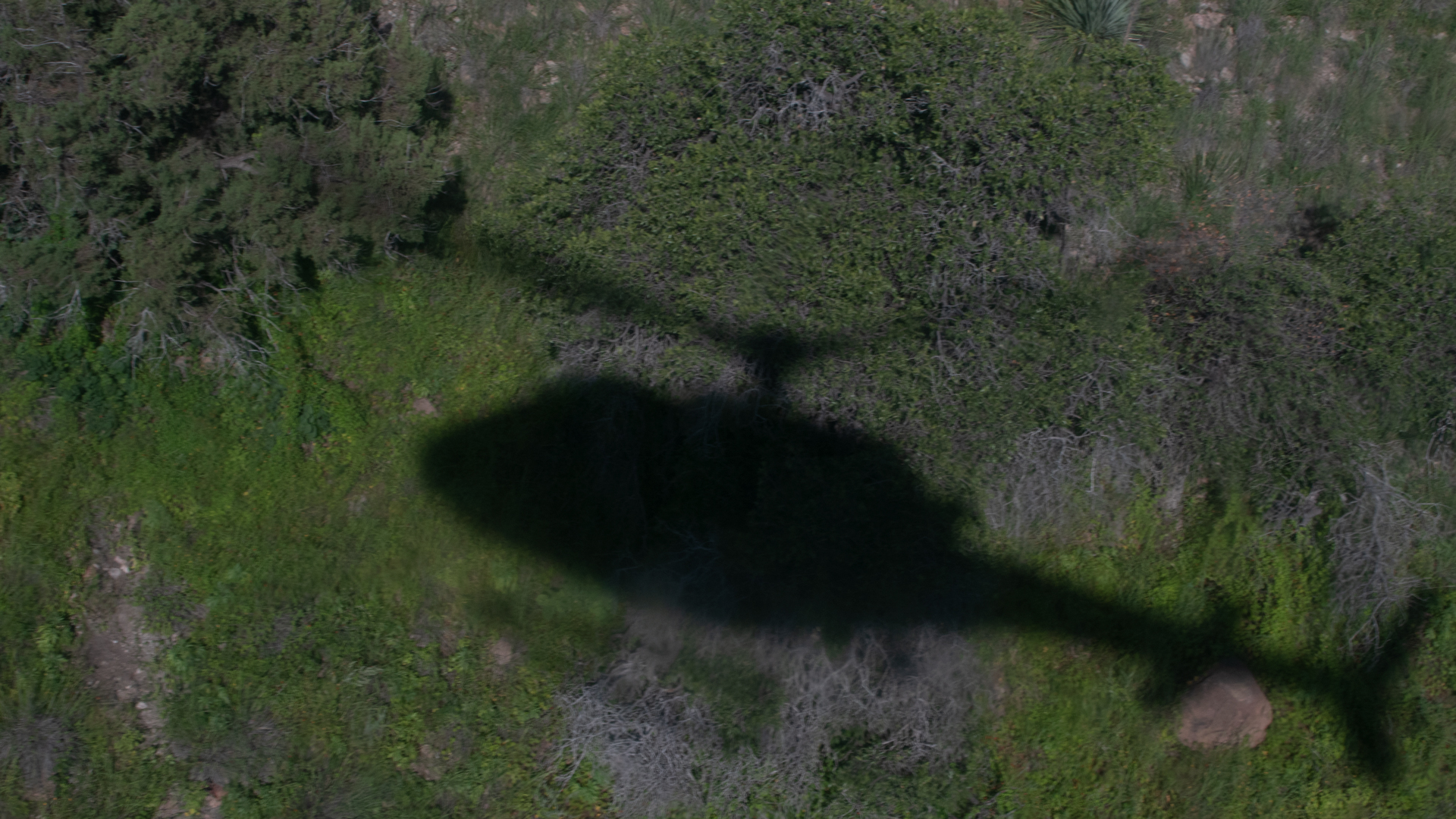 Border Patrol Helicopter Shadow
