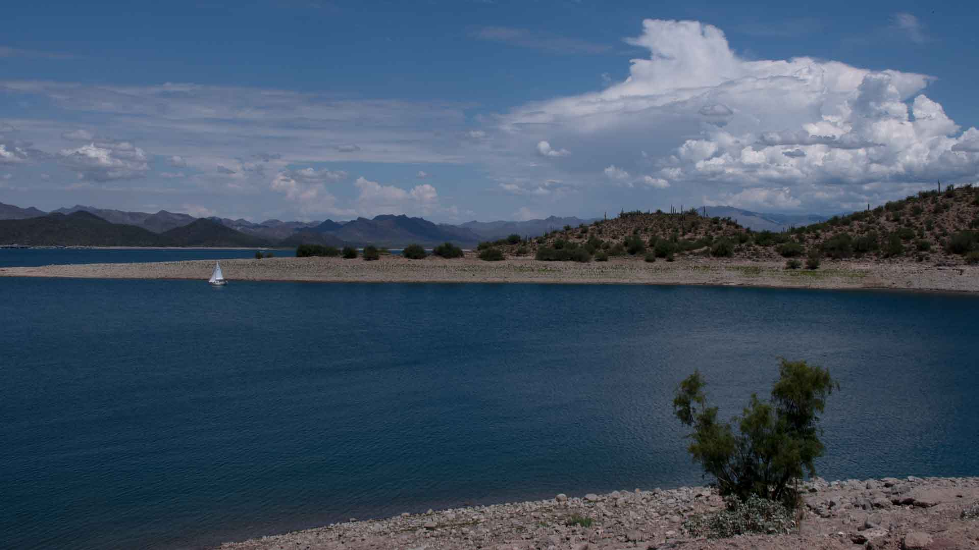 Lake Pleasant, north of Phoenix, is a major reservoir for Colorado River water.  Each summer the lake is pumped down to send water to Maricopa, Pinal, and Pima counties. July 2021