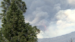 wild fire burning